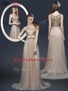 Luxurious Brush Train Cocktail Dresses with Appliques and Bowknot