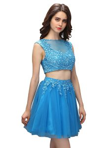 Two Pieces Cocktail Dresses Baby Blue Asymmetric Tulle Sleeveless Mini Length Zipper