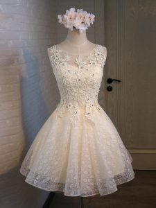 Noble Champagne Lace Up Scoop Lace and Appliques and Belt Cocktail Dresses Organza and Lace Sleeveless
