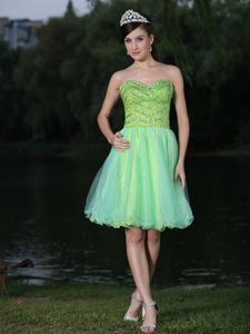 Beaded Bodice Organza Skirt Cocktail Reception Dresses in Green Color for Augusta