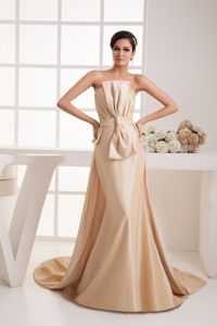 Champagne Bowknot Ruched Watteau Train Dresses for Wedding Cocktail Party