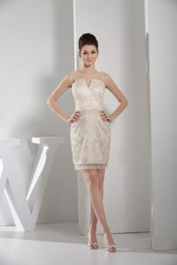 Champagne V-neck Cocktail Dress for Celebrity with Lace Overlay in Bismarck