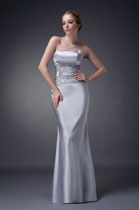 Sliver Taffeta Strapless Dress For Wedding Cocktail Party Kentucky