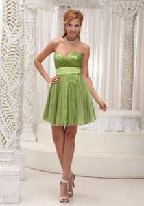 Kansas Green Homecoming Cocktail Dress in Tulle and Shinning Fabric