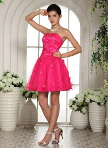 Hot Pink Homecoming Cocktail Dress with Appliques and Beading Iowa