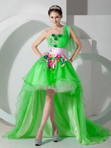 One Shoulder Spring Green High-low Cocktail Dress For Prom Illinois