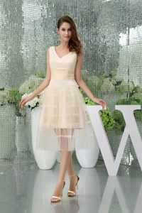 A-line V-neck Champagne Tulle Prom Cocktail Dress in Citrusdal Short Style