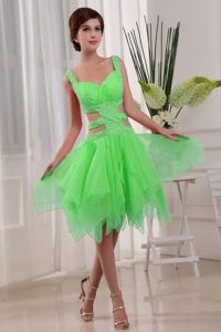 Organza Green Beaded Cocktail Dress For Celebrity with Straps