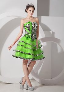 Zebra Spring Green Strapless Layered Cocktail Dress For Prom in Nieu Bethesda