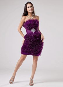 Luxurious Purple Strapless Ruffles Appliques Cocktail Dress For Prom in Alice